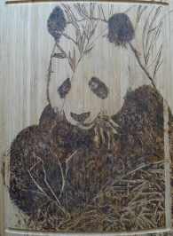 HTN - PANDA