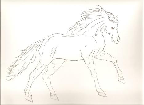 stallion-2-WORDPRESS