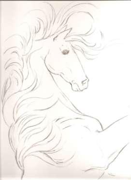stallion-6-WORDPRESS